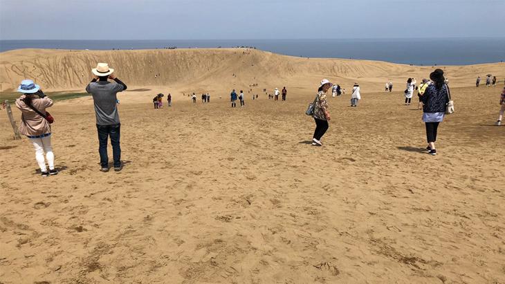 鳥取砂丘の魅力と観光案内について